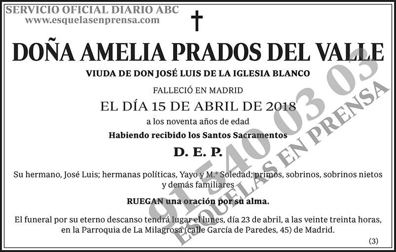 Amelia Prados del Valle